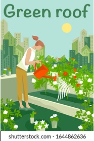Rooftop urban farming, gardening or agriculture. A woman watering flowers with watering can on the rooftop with a city tower buildings on the background