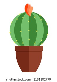 Room, green cactus in flower pot  isolated on a white background. Flat, cartoon style. Vector illustration.