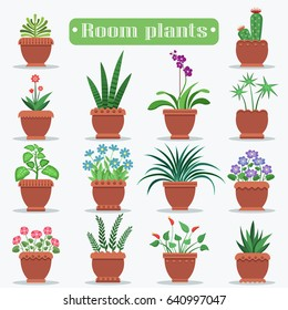 Room plants in clay pots vector illustrations set. Beautiful blooming flowers and ever green plants for home decoration big set.