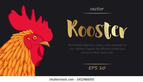 Rooster. Colored cockerel head. Vector illustration isolated on black.