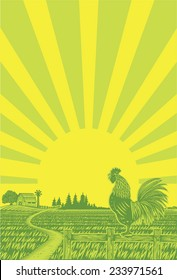 Rooster crowing at rice field in the morning with sun rising background in woodcut style