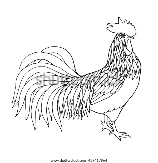 Rooster Coloring Pages - GetColoringPages.com | 620x600