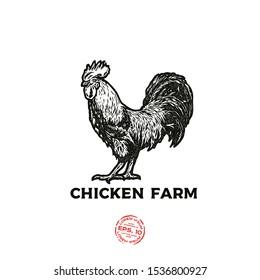 Rooster logo. Cock Illustration in Vintage engraving style. Ink stamp designs. Vintage textured sign.