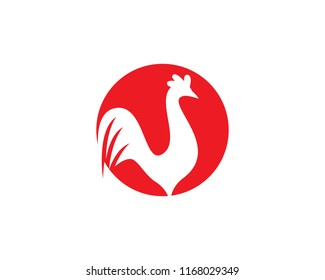 Rooster Logo Template vector icon illustration design