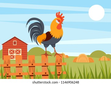 Rooster standing on wooden fence on the background of summer rural landscape and barn vector Illustration in flat style