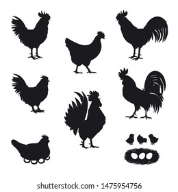 Сhickens, Roosters, little baby chicken and chicken eggs. Set of Black Silhouettes poultry on white. Vector illustration.