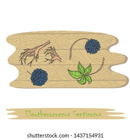 Root, Leaves and Berries of the Siberian Ginseng on the Cutting Board. Curved Shaped Board with Wood Texture. Herbal with Latin Name Eleutherococcus Senticosus. Leaflet for Traditional Herbal Medicine
