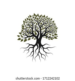 root of the tree logo illustration