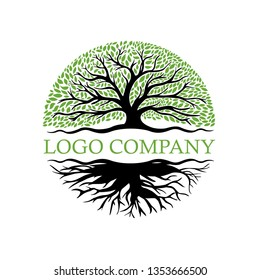 Root Of The Tree logo illustration vector