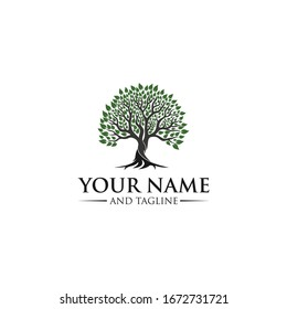 Root Of The Tree logo illustration. Vector silhouette of a tree templates of tree logo and roots, tree of life design illustration
