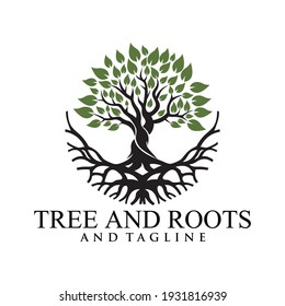 Root Of The Tree logo illustration. Vector silhouette of a tree,Abstract vibrant tree logo design, root vector - Tree of life logo design inspiration isolated on white background.