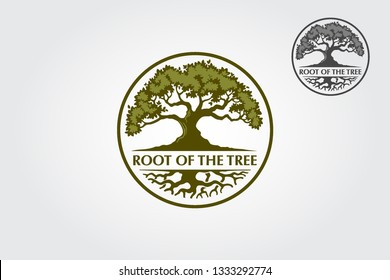 Root Of The Tree Logo is a multipurpose logo. This logo can be used by law companies, landscape business, royalty brands, hotels, financial companies, insurance, etc.