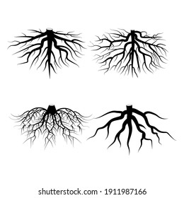 Roots on white background. Nature illustration. Tree vector icon. Floral background. Round shape. Stock image. EPS 10.