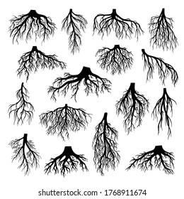 Roots of tree, bushes, shrubs black silhouettes set. Rootstock, rhizoma, creeping underground stem, rootstalk. Botany, dendrology vector illustration collection isolated on white background.