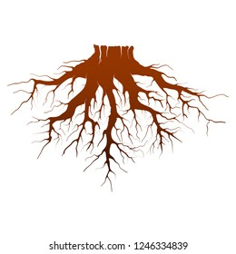 roots vector illustration