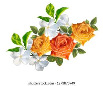 Rose ans apocyneceae beautiful bouquet  flowers - vector illustration