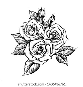 Rose by hand drawing. Beautiful flower on white background