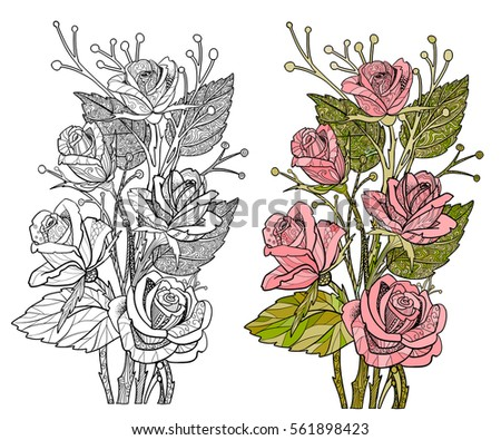Rose Coloring Page Flower In Doodle Style For Adult Book With Sample