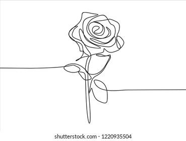 Rose. Continuous line