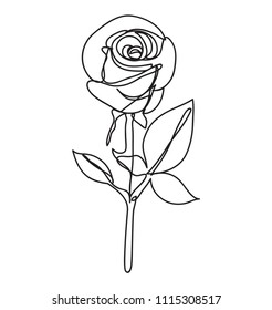 rose Flower  ,line drawing style,  art design