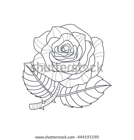 Rose Flower Monochrome Drawing Coloring Book Stock Vector Royalty