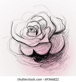Rose flower / realistic sketch (not auto-traced)