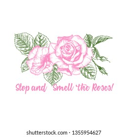 Rose flower sketch in engraving style on white background. Pink and green color. Vintage vector illustration, t-shirt print. Love background. Typography design. Lettering text Stop and Smell the Roses