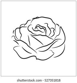 rose, flower, vector icon, eps10