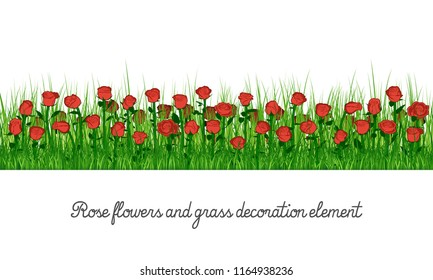 Rose flowers and grass decoration element, isolated on transparent background, cartoon vector illustration.