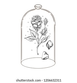 Rose in a glass flask. Outline vector illustration of a fairy tale.