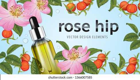Rose hip flower with seed on background template. Vector set of element for advertising, banner, packaging design of rosehip oil products.