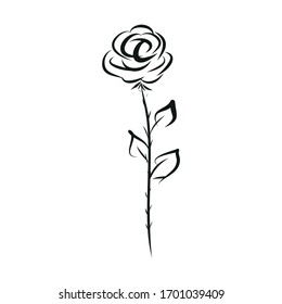 rose icon hand drawing, vector illustration isolated on white background