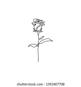 Rose minimalist drawing continuous one line
