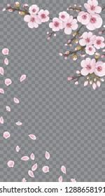 Rose on transparent fond. Design element for textiles, wallpaper, packaging, printing, story. Handmade background in oriental style. Light frame vertical of sakura flowers.