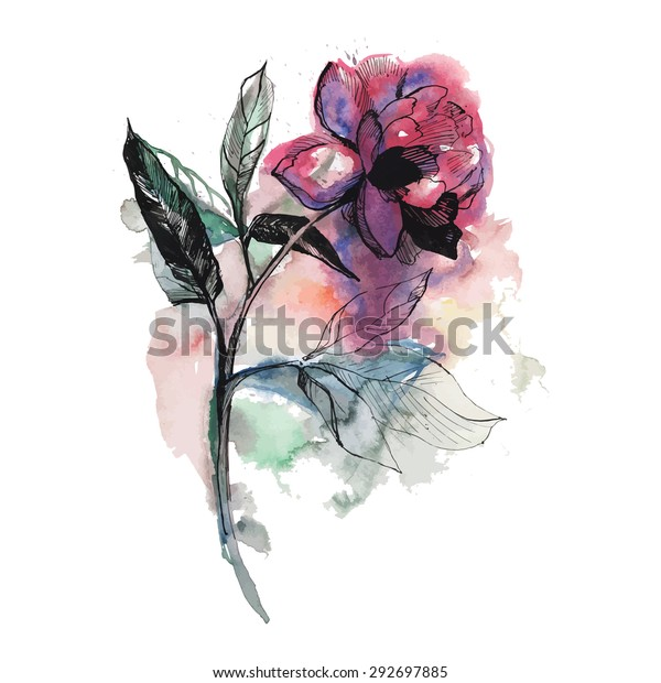 Rose or peony flower on white background in vector format. Beautiful watercolor print. Perfect for postcard.