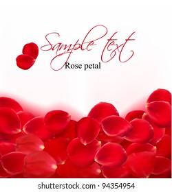 Rose petals border. Vector illustration.