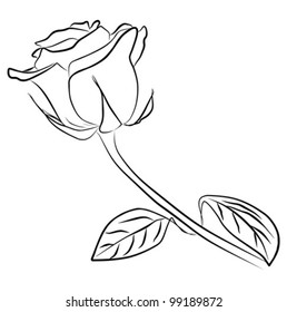 rose silhouette - freehand on a white background, vector illustration