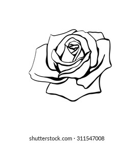 rose outline images stock photos vectors shutterstock