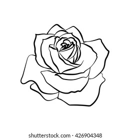 d59f64fc1 Rose sketch. Black outline on white background. Vector illustration.