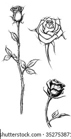 Rose Sketch-Variation of roses in different drawing style