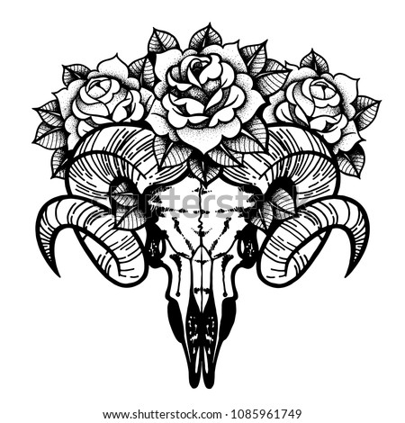 Rose Tattoo Skull Sheep Horns Traditional Stock Vector Royalty Free