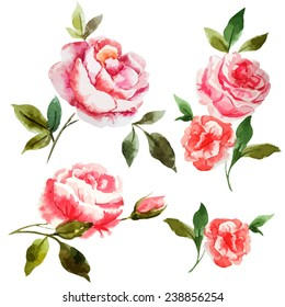 rose, watercolor, Shabby Chic