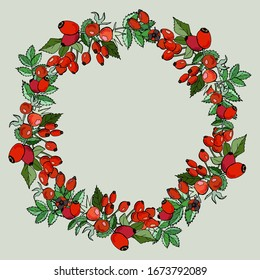 Rosehip berries, wreath design. Cartoon style illustration. For design announcements, greeting cards, posters, advertisement.