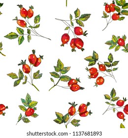 Rosehip seamless pattern for tea. Vector graphic illustration