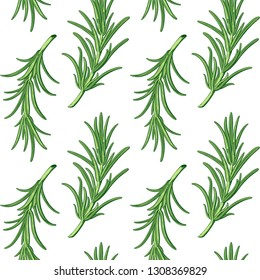 Rosemary branches seamless vector pattern background. Provence herbs. Green leaf leaves, twig, branch, herb stick. Isolated. Botanical. Floral. Herbal. Flower. Ingredient. Retro engraving ink drawing.