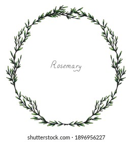 Rosemary. Laurel wreath. Sprig of plants with leaves. Fragrant Italian seasoning for food. Black and white drawing in the old vintage style. Hand-drawn ink sketch. Isolated illustration