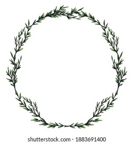 Rosemary. Sprig of plants with leaves. Fragrant Italian seasoning. Laurel wreath. Drawing in the old vintage style. Hand-drawn ink sketch. Isolated illustration
