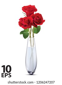 Roses in a glass vase, isolated. Realistic vector 3d illustration