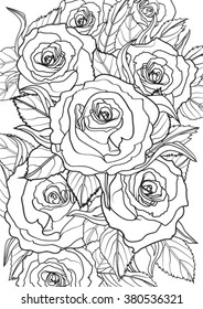 Roses. Hand drawn vector illustration.