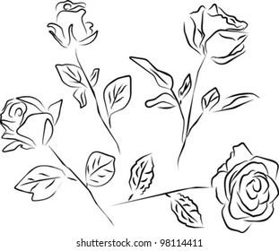 roses silhouette - white background, vector illustration